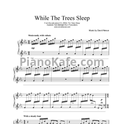 Ноты David Nevue - While the trees sleep - PianoKafe.com
